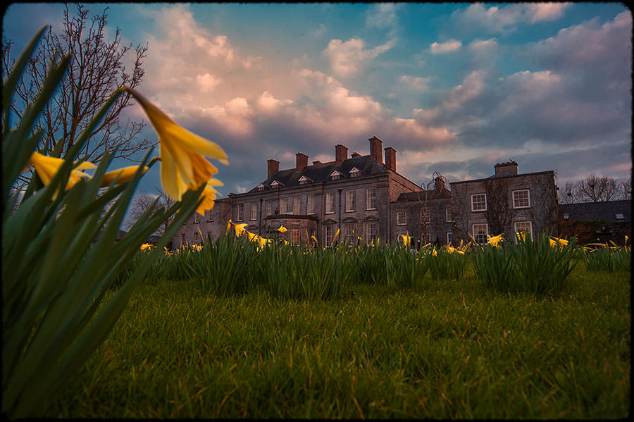 N + M | Durrow Castle Wedding | Dublin Wedding Photographer 81