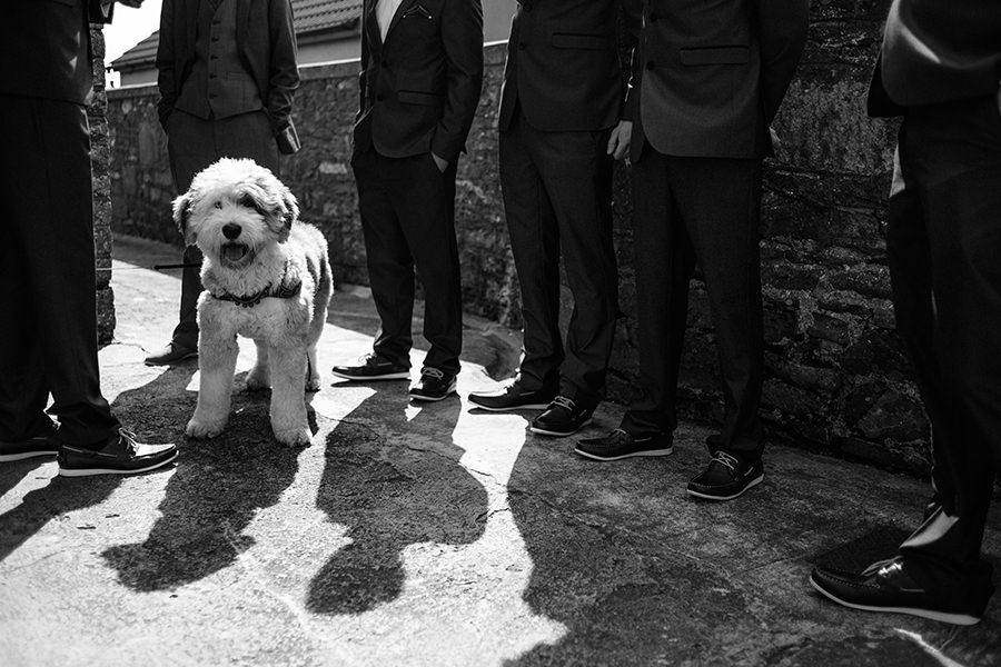 boho wedding-ireland photographers-31