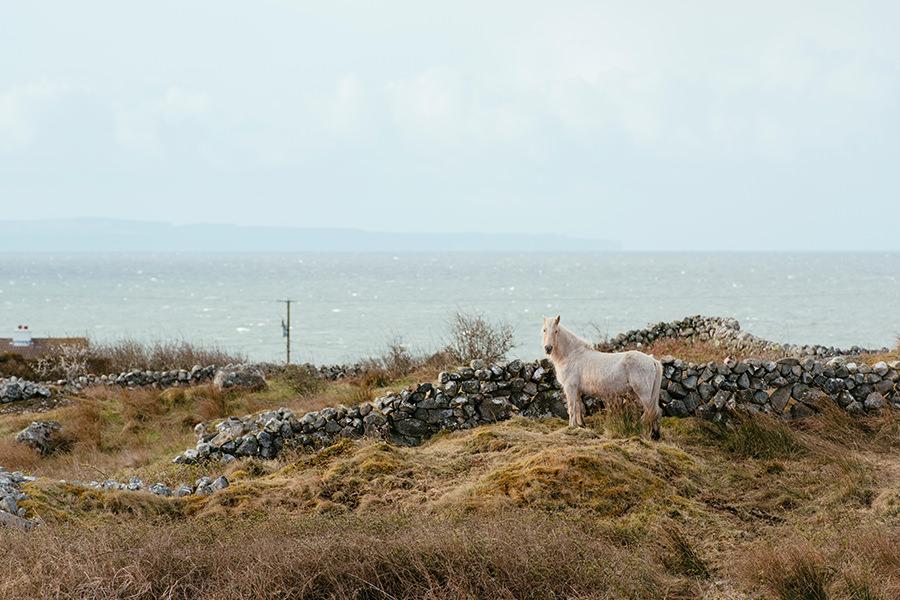 connemara wedding-ireland photography-01b
